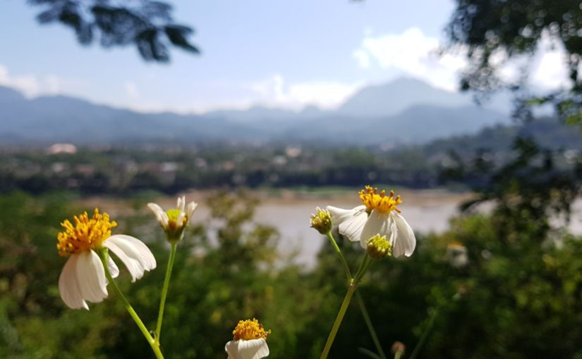 31) Über Huay Xai und Pakbeng nach Luang Prabang – thank god for this beautiful view!